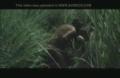 Video Bokep Perkosaan Diperkosa Di Semak Belukar Terbaru
